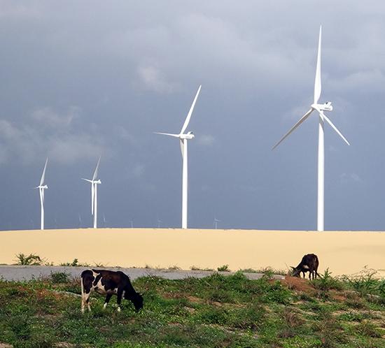 São Bento do Norte Wind Farm Brazil
