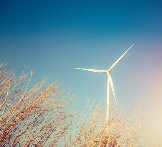 Se requiere iluminación de turbinas eólicas en todos los parques eólicos